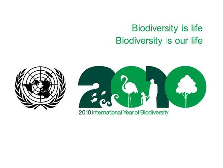 Biodiversity is life Biodiversity is our life. Biodiversity is life Biodiversity is our life I. The Convention on Biological Diversity Adopted in 1992.