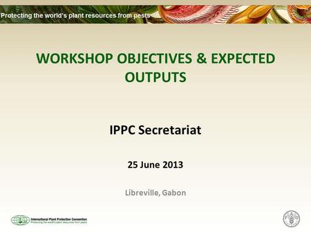 WORKSHOP OBJECTIVES & EXPECTED OUTPUTS IPPC Secretariat 25 June 2013 Libreville, Gabon.