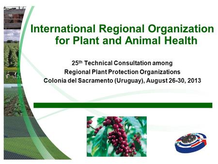 International Regional Organization for Plant and Animal Health 25 th Technical Consultation among Regional Plant Protection Organizations Colonia del.