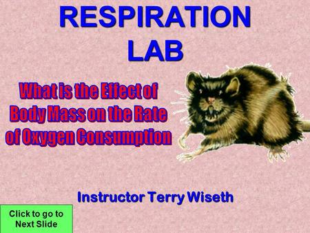 RESPIRATION LAB Instructor Terry Wiseth Click to go to Next Slide.