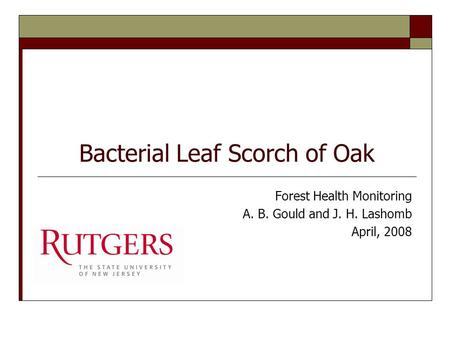 Bacterial Leaf Scorch of Oak Forest Health Monitoring A. B. Gould and J. H. Lashomb April, 2008.