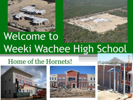 Welcome to Weeki Wachee High School Home of the Hornets!