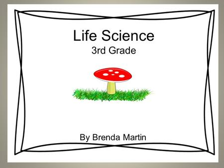 Life Science 3rd Grade By Brenda Martin. Why do people investigate plants and animals? Discuss this question at your teams and be prepared to come up.