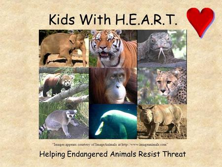 "Kids With H.E.A.R.T. Helping Endangered Animals Resist Threat ""Images appears courtesy of ImageAnimals at"
