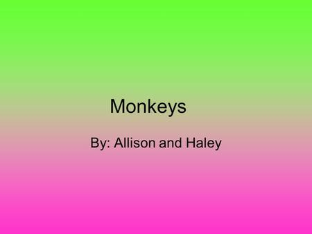Monkeys By: Allison and Haley. <> <> <> <> Introduction Listen Carefully so you can find out all the information you need to know about monkeys.