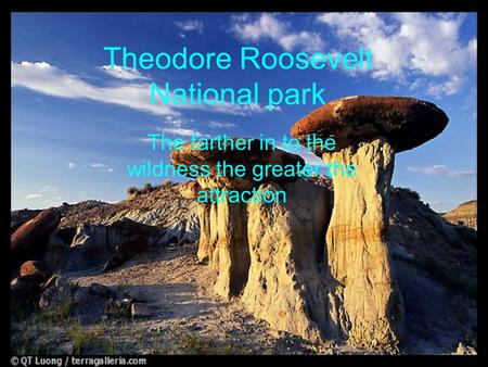 Theodore Roosevelt National park The farther in to the wildness the greater the attraction.