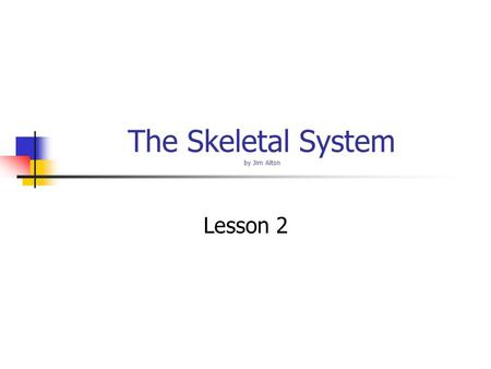 The Skeletal System by Jim Alton Lesson 2 The Skeletal System Objectives – Name the major groups of the skeletal system. Identify bones using common.