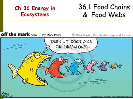 Ch 36 Energy in Ecosystems Ch 36 Energy in Ecosystems 36.1 Food Chains & Food Webs.