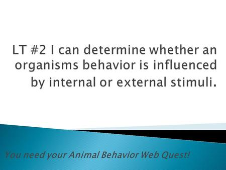 You need your Animal Behavior Web Quest!.  Is the study of animal behavior with special attention to the natural environment and physiological, evolutionary.