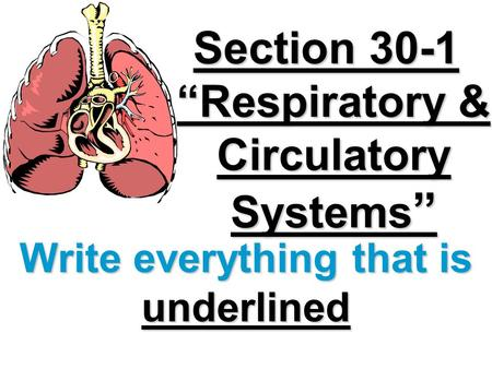 "Section 30-1 ""Respiratory & Circulatory Systems "" Write everything that is underlined."