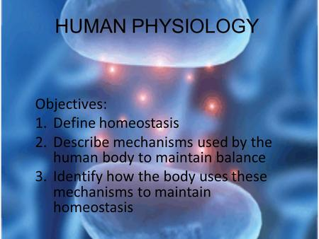 HUMAN PHYSIOLOGY Objectives: 1.Define homeostasis 2.Describe mechanisms used by the human body to maintain balance 3.Identify how the body uses these mechanisms.