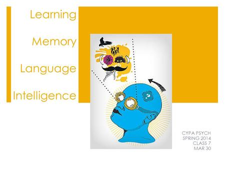 learning and memory multiple intelligences Music and language learning by: this memory has always reinforced to me that music can be a strong tool for memorization and multiple intelligences in the.