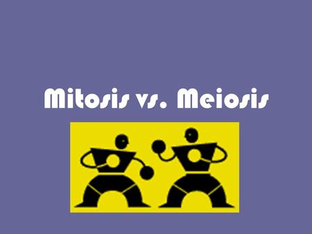 Mitosis vs. Meiosis. Meiosis Mitosis Based on the diagram, The difference between mitosis and meiosis is that mitosis produces two identical daughter.