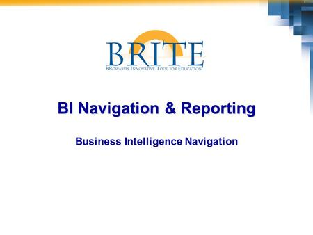 BI Navigation & Reporting Business Intelligence Navigation.