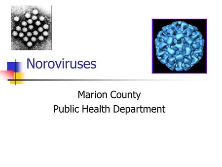 Noroviruses Marion County Public Health Department.