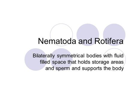 Nematoda and Rotifera Bilaterally symmetrical bodies with fluid filled space that holds storage areas and sperm and supports the body.