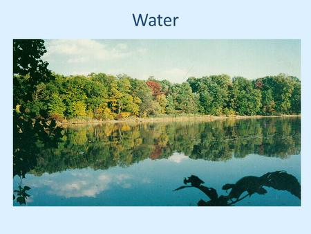 Water. When it rains, water is intercepted by natural vegetation Water then infiltrates the soil.