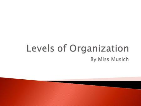 By Miss Musich.  Organize – to put something in order ◦ We organize to make something more manageable. ◦ For example, the MWMS is organized!  Students.