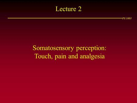 PS 1003 Lecture 2 Somatosensory perception: Touch, pain and analgesia.