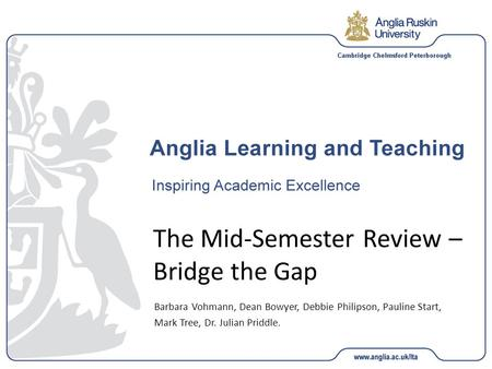 The Mid-Semester Review – Bridge the Gap Barbara Vohmann, Dean Bowyer, Debbie Philipson, Pauline Start, Mark Tree, Dr. Julian Priddle.