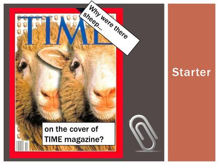 Starter Why were there sheep… on the cover of TIME magazine?