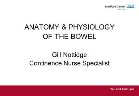 ANATOMY & PHYSIOLOGY OF THE BOWEL Gill Nottidge Continence Nurse Specialist.