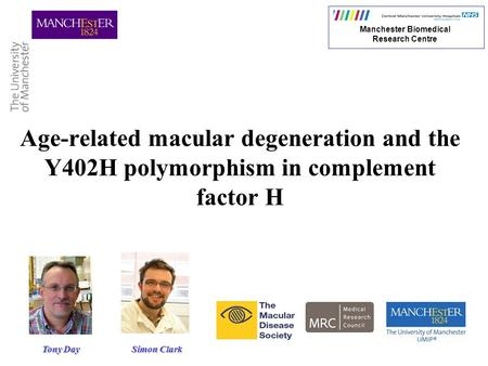 Age-related macular degeneration and the Y402H polymorphism in complement factor H Manchester Biomedical Research Centre Simon Clark Tony Day.
