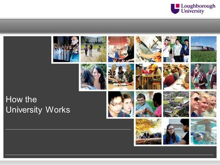 How the University Works. Building Excellence Strategy – Our Values  Respect each other and celebrate our diversity  Recognise and reward excellence.