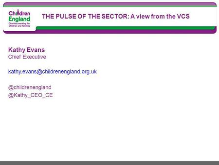 Kathy Evans  THE PULSE OF THE SECTOR: A view from the VCS.