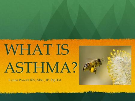 WHAT IS ASTHMA? Lynne Powell RN, MSc., IP, PgCEd.