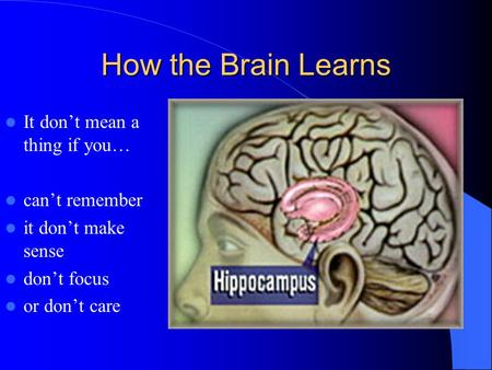 How the Brain Learns It don't mean a thing if you… can't remember it don't make sense don't focus or don't care.