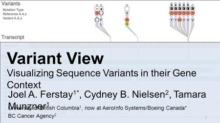 Variant View Visualizing Sequence Variants in their Gene Context Joel A. Ferstay 1*, Cydney B. Nielsen 2, Tamara Munzner 1 University of British Columbia.