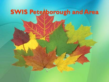 SWIS Peterborough and Area. SWIS: A Partnership New Canadians Centre Non-profit agency that supports newcomers to adapt to life in Canada Funded by Citizenship.