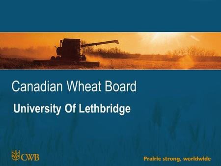 Canadian Wheat Board University Of Lethbridge. 2 1 CWRS 13.5 vs. DNS 14 US$ /bu Average Price Received (USDA)Average Elevator Bid DNSNDMTNDMTDPC OfferedDPC.