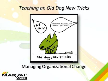 Teaching an Old Dog New Tricks Managing Organizational Change.