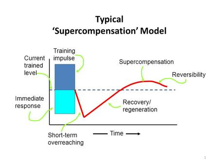 1 Typical 'Supercompensation' Model Current trained level Immediate response Training impulse Supercompensation Reversibility Recovery/ regeneration Short-term.