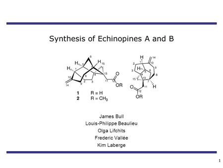11 Synthesis of Echinopines A and B James Bull Louis-Philippe Beaulieu Olga Lifchits Frederic Vallée Kim Laberge.