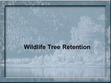 1 Wildlife Tree Retention. 2 Wildlife tree retention One of most valuable components of stand-level biodiversity Over 80 species of wildlife are critically.