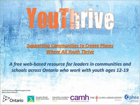 Supporting Communities to Create Places Where All Youth Thrive A free web-based resource for leaders in communities and schools across Ontario who work.