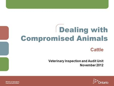 Dealing with Compromised Animals Cattle Veterinary Inspection and Audit Unit November 2012.