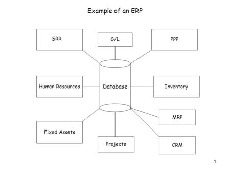 1 Database SRR PPP Human Resources Fixed Assets Inventory G/L Projects MRP Example of an ERP CRM.