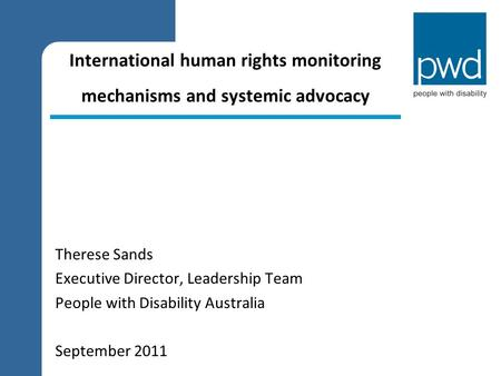 International human rights monitoring mechanisms and systemic advocacy