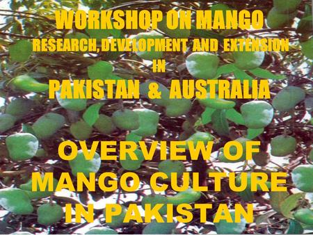 WORKSHOP ON MANGO RESEARCH, DEVELOPMENT AND EXTENSION IN PAKISTAN & AUSTRALIA OVERVIEW OF MANGO CULTURE IN PAKISTAN.