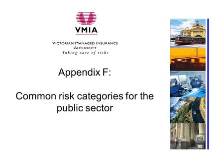 Appendix F: Common risk categories for the public sector Insert client-specific photo here.