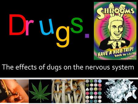 The effects of dugs on the nervous system D r u g s.