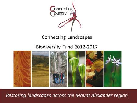 Restoring landscapes across the Mount Alexander region Connecting Landscapes Biodiversity Fund 2012-2017 1.