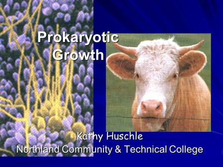 Prokaryotic Growth Kathy Huschle Northland Community & Technical College.