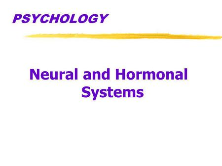 PSYCHOLOGY Neural and Hormonal Systems. True or False? 1.A small amount of brain tissue from a person cannot be distinguished from that of a monkey. 2.The.