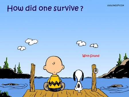 How did one survive ? With Sound How did one survive growing up in the 70's, 80's and 90's ?