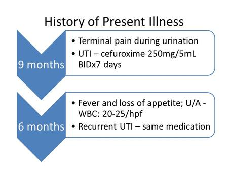 History of Present Illness 9 months Terminal pain during urination UTI – cefuroxime 250mg/5mL BIDx7 days 6 months Fever and loss of appetite; U/A - WBC: